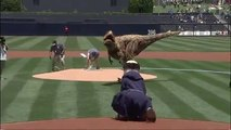 T-Rex playing Baseball : Dinosaur Throws Out First Pitch at Padres Game
