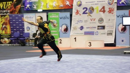 Léo Benouaich - Daoshu Senior optionnel - Championnat d'Europe Wushu 2014