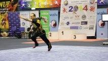 Léo Benouaich - Daoshu Senior optionnel - Championnat d'Europe Wushu 2014