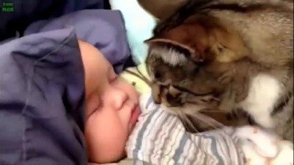 Animali che si prendono cura di neonati