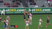 AFL 2014 - Round 8 - Melbourne v Western Bulldogs(4th quarter)