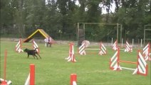 agility dolce miramas select gpf 14 jump