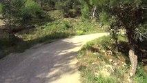 Cuges les pins GR98 50 km 06
