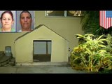 Marijuana and cockfighting-cops raid Miami home and find hidden grow center