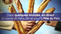 La Fête du Pain le 14 mai 2014 sur le parvis de Notre Dame à Paris