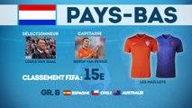 Coupe du Monde 2014 : focus sur les Pays-Bas !