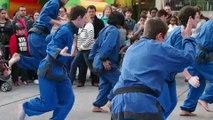Arts martiaux à Renens