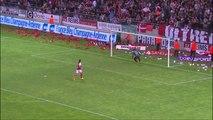 Stade de Reims - Stade Rennais FC (1-3) - Résumé - 17/05/14 - (SdR-SRFC)