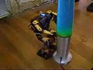 Robot libido