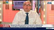 Didier Lombard, président du conseil de surveillance de STMicroelectronics, dans Le Grand Journal - 19/05 1/4