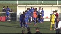 [CFA 2] ESTAC - FC  Sarreguemines : Résumé