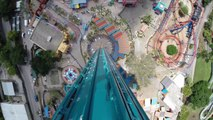 Manège de dingue comme si vous y étiez : Falcon's Fury POV au Busch Gardens Tampa