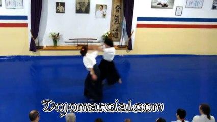 Kote gaeshi (aikido) - Sensei Leonardo Sakanashi (5to Dan Aikikai)