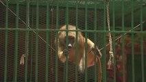 Sénégal, A la découverte du Zoo de Dakar