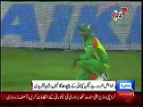 Shahid Afridi May Quit ODIs After 2015 World Cup
