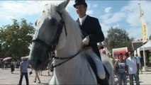 La Feria du Cheval au domaine Paul Ricard à Méjanes