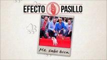 """Canción película """"Pancho, el perro millonario"""", Efecto Pasillo - Me Sabe Bien"""