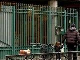 Agression de juifs à Créteil: la communauté dénonce une montée de l'antisémitisme - 26/05