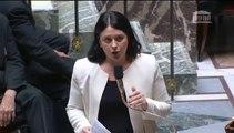 Sylvia Pinel répond à la QAG du député William Dumas