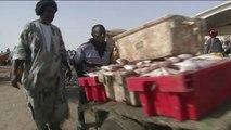 Mauritanie, Le secteur halieutique, pourmon de l'économie