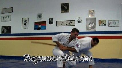 Aikido Examen Shodan (1 Dan) - Part II - Tachi Dori - Aikido Shodan Examination - Aikido Shodan Teste - Aikido Shodan Test