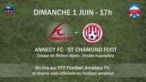 Coupe de Rhône-Alpes - Finale seniors : Annecy FC vs St Chamond Foot