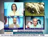 Οι κτηνοτρόφοι αγωνιούν και ζητούν συνάντηση με τον υπουργό