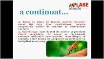 Sunt elementele esențiale asociate plaselor de insecte?