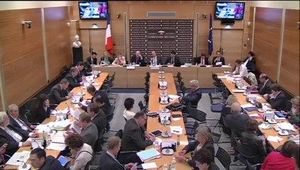 commission des lois- RAPPORT DU CONSEIL D ETATsur le NUMERIQUE 8 OCTOBRE 2014