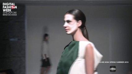 Pauline Ning X Digital Fashion Week Singapore 2013