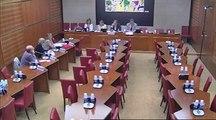 Audition Syndicat National des Professionnels Infirmiers - Jeudi 4 Juillet 2013