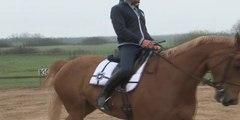 Cheval Pratique - Le trot avec Bertrand Poisson