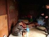 Bordeaux: des demandeurs d'asile ont élu domicile dans des wagons désaffectés - 04/06