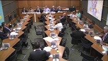 Commission du développement durable auditionne MM. Marc Blanc et Allain Bougrain Dubourg, rapporteurs au CESE