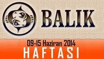 BALIK Burcu HAFTALIK Burç ve Astroloji Yorumu, 09-15 Haziran 2014, Astroloji Uzmanı Demet Baltacı