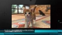 00274 nintendo 3ds nintendogs kazunari ninomiya sho sakurai arashi video games jpop - Komasharu - Japanese Commercial
