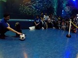 Морской котик-футболист появился в Токио