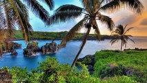 Hawaii et Ukulélé (Musique de Chris Wilson)