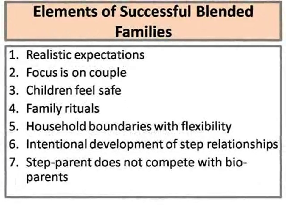 The Complex Dynamics of Blended Families final