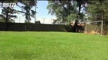 Coupe du monde / Bienvenue à Ribeirao Preto - 09/06