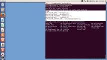 Linux Configuring Wordpress