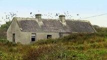 Ireland's Wild Atlantic Way – Downpatrick Head, Co. Mayo - Wild Atlantic Way, Ireland
