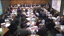 Intervention de Danielle AUROI le 10 juin 2014, lors de l'audition, organisée par la Commission du développement durable de l'Assemblée nationale, de Madame Ségolène ROYAL, Ministre de l'Ecologie, du Développement durable et de l'Energie