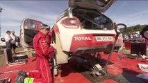 Best of Rally d'Italia Sardegna - Citroën WRC 2014