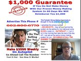 Silver Fox Direct Pay System DPS Free Lead Capture Page I Do The Selling For You