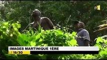 2014/06/15 19h30 Jt RFO ► le Joyeux de Cocotier Made-in-Martinique ReDéscend du Sommet de son Arbre après 24 Heures y Resté Accroché/ Suspendu Le Lorrain Extrait Journal Information Guadeloupe Outre-Mer 1ère France Télévision Dimanche 15 Juin 2014