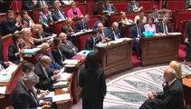 Sylvia Pinel répond à la QAG de la députée Dominique Nachury