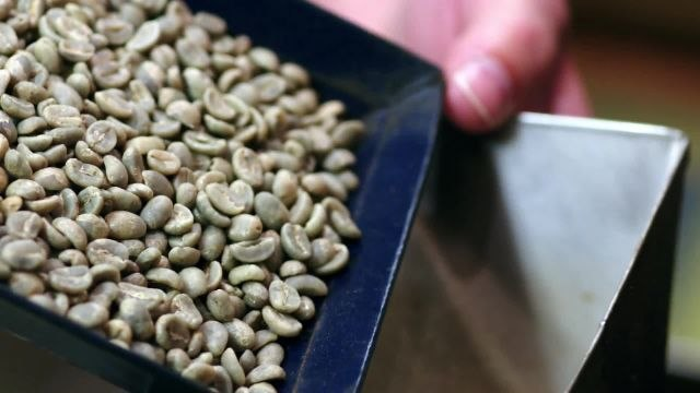 Epicuriousity - Gevalia: Selecting the Finest Coffee Beans