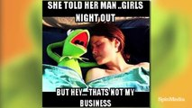 "Top 25 Kermit The Frog ""None of My Business"" Memes"