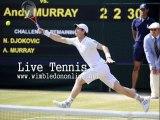 Live WIMBLEDON Djokovic vs Raonic